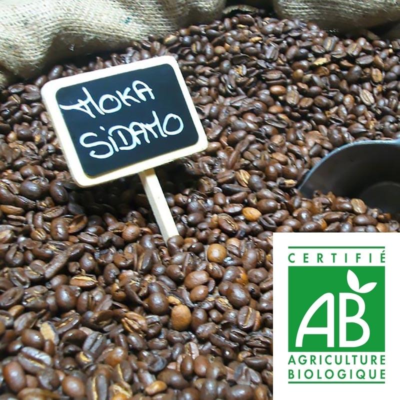 Cafés Moka Sidamo Bio - Torréfaction Noailles